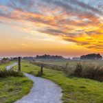 Winding cycling track through Dutch Polder landscape under beautiful sunset