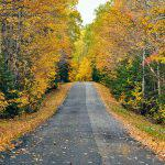 Autumn road in Maine, USA.